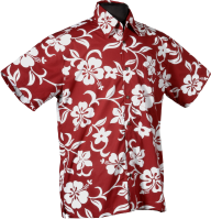 Classic Red Hibiscus Hawaiian Shirt